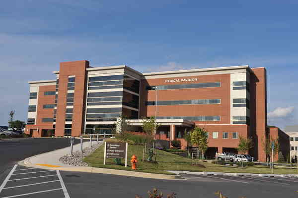 Physical Therapy In Columbia Maryland Orthopaedic Associates Of
