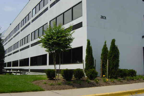 foto de Physical Therapy in Silver Spring Maryland Orthopaedic